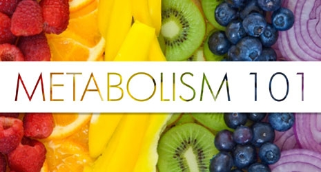 pearland personal trainer metabolism