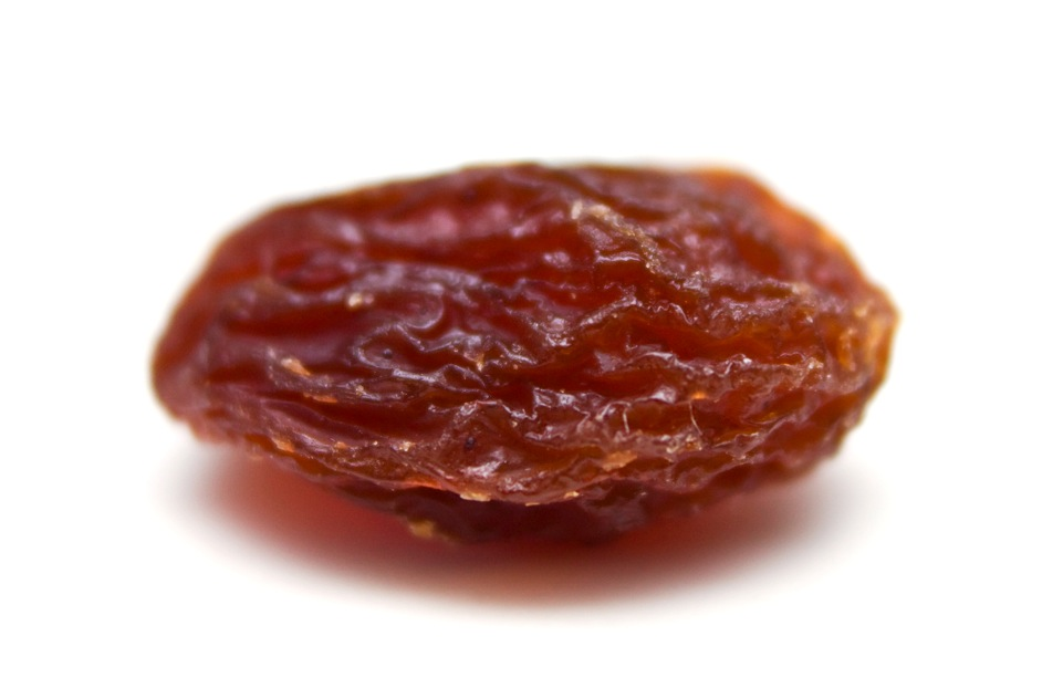 single raisin